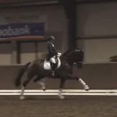 Maxime-van-der-Vlist-Bailey-BrabantseKampioenschappen-januari2014-Ereronde2